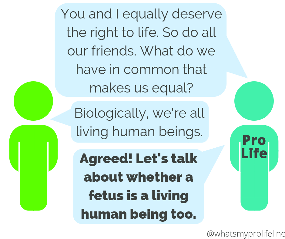 Person 1 (our hero): You and I equally deserve the right to life. So do all our friends. What do we have in common that makes us equal? Person 2: Biologically, we're all living human beings. Person 1 (our hero): Agreed! Let's talk about whether a fetus is a living human being too.
