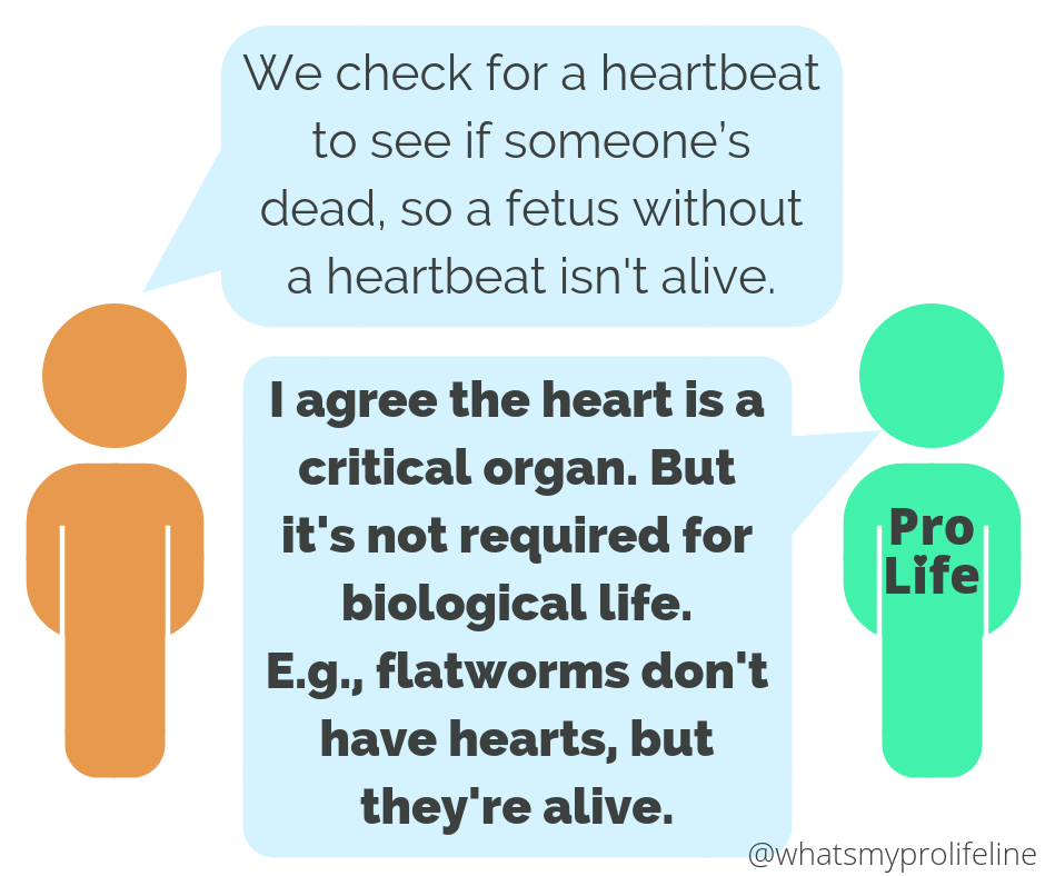 Person 1: We check for a heartbeat to see if someone's dead, so a fetus without a heartbeat isn't alive. Person 2 (our hero): I agree the heart is a critical organ. But it's not required for biological life. E.g., flatworms don't have hearts, but they're alive.