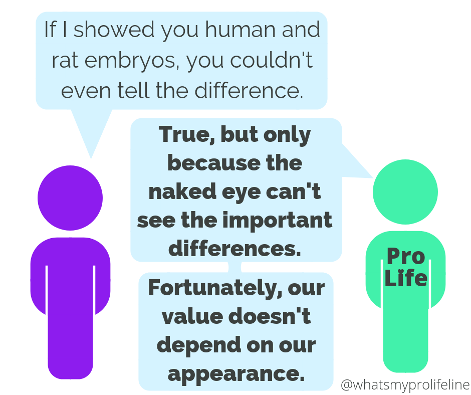 Person 1: If I showed you human and rat embryos, you couldn't even tell the difference. Person 2 (our hero): True, but only because the naked eye can't see the important differences. Fortunately, our value doesn't depend on our appearance.