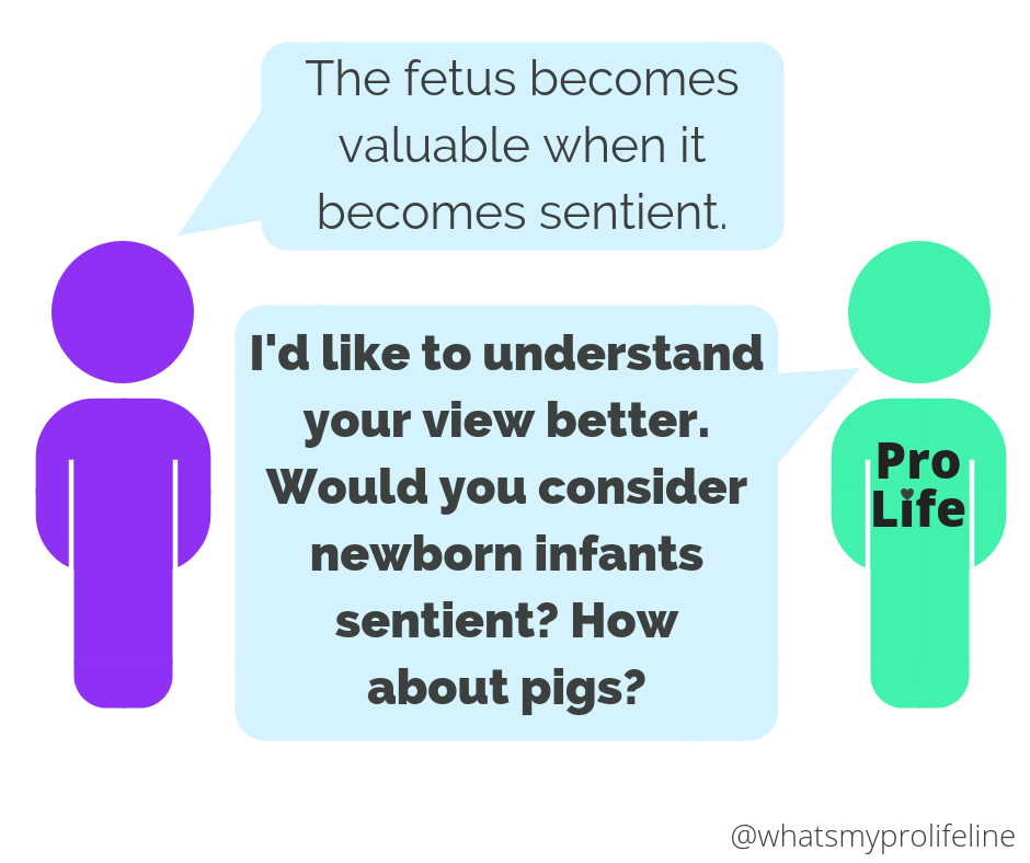 Person 1: The fetus becomes valuable when it becomes sentient. Person 2 (our hero): I'd like to understand your view better. Would you consider newborn infants sentient? How about pigs?