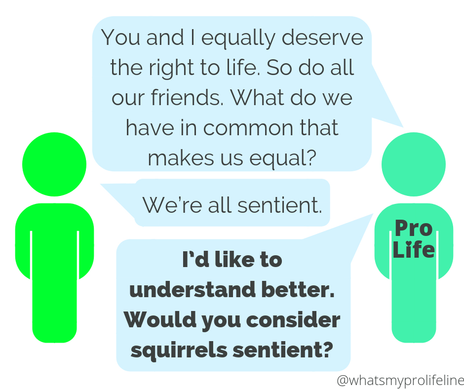 Person 1 (our hero): You and I equally deserve the right to life. So do all our friends. What do we have in common that makes us equal? Person 2: We're all sentient. Person 1 (our hero): I'd like to understand better. Would you consider squirrels sentient?