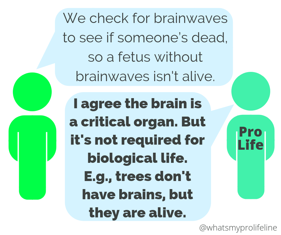 Person 1: We check for brainwaves to see if someone's dead, so a fetus without brainwaves isn't alive. Person 2 (our hero): I agree the brain is a critical organ. But it's not required for biological life. E.g., trees don't have brains, but they are alive.