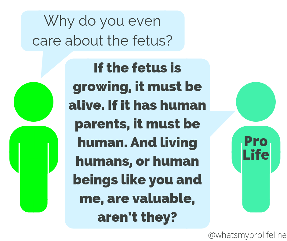 Person 1: Why do you even care about the fetus? Person 2 (our hero): If the fetus is growing, it must be alive. If it has human parents, it must be human. And living humans, or human beings like you and me, are valuable, aren't they?